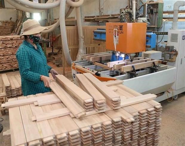 未来五年力争实现木材和林产品出口额达200亿美元的目标 hinh anh 1