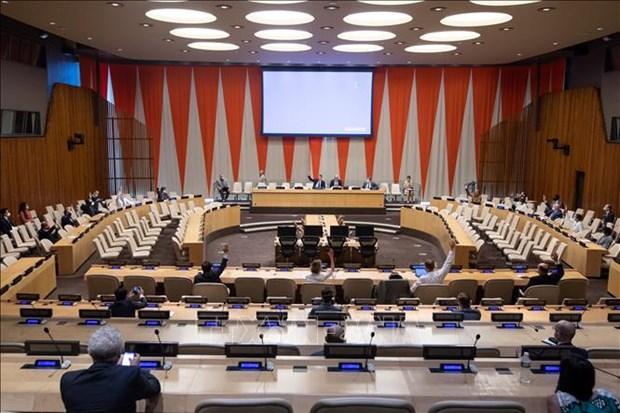 越南呼吁国际社会协助索马里实现和平、稳定与发展目标 hinh anh 1