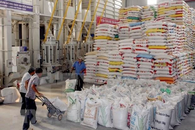 越南大米对菲律宾出口首次突破10亿美元 hinh anh 1