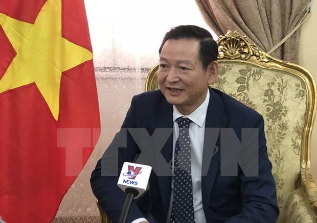 越共十三大:旅居埃及越南人对国家未来发展充满信心 hinh anh 1