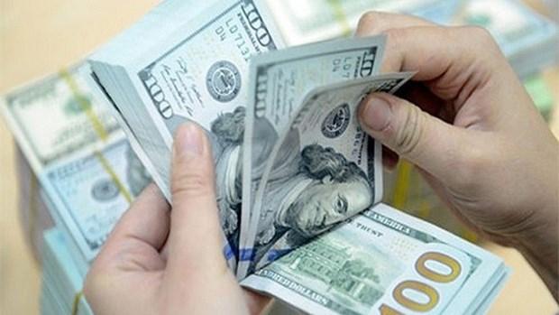 25日上午越盾对美元汇率中间价上调5越盾 hinh anh 1