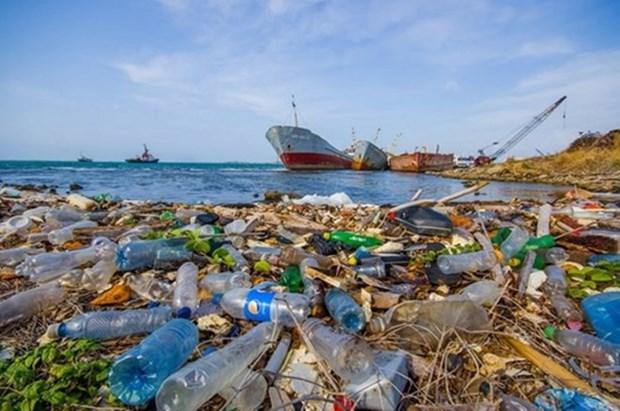 推广减少塑料垃圾污染的倡议和措施 hinh anh 1