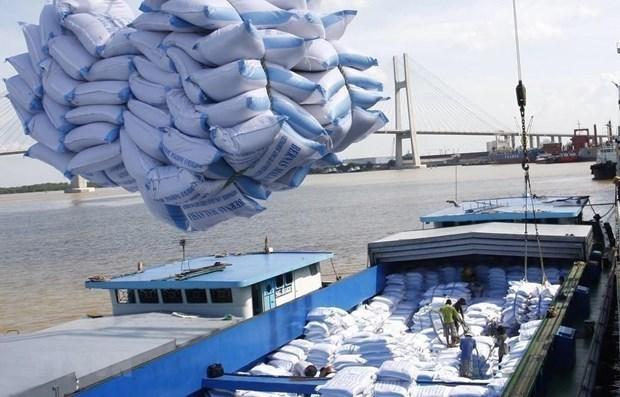 按照越英自贸协定输出英国的越南首批60吨大米正式上市 hinh anh 1