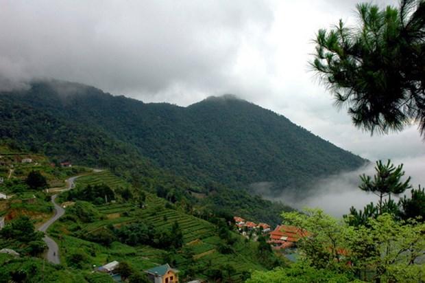 三岛国家公园——越南宝贵自然资源保护区 hinh anh 1