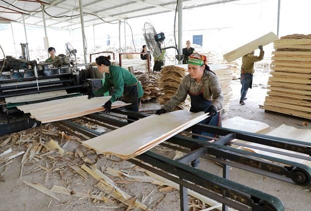 东盟发布关于区域劳动生产率的报告 hinh anh 1