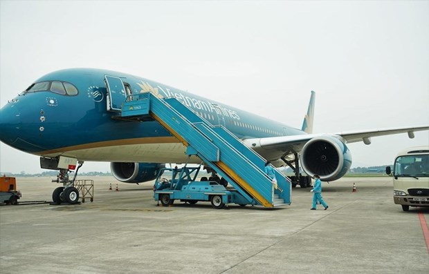 春节期间越南各家航空公司执行的航班量近2.1万架次 hinh anh 1
