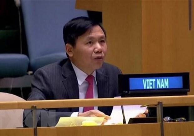 越南代表出席缅甸问题联大非正式会议并阐述越方立场 hinh anh 1