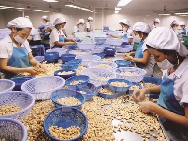 2021年前2月美国是越南农产品的最大出口市场 hinh anh 1