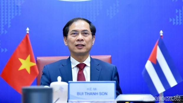 第六次越南-古巴外交部副部长级政治磋商召开 hinh anh 1