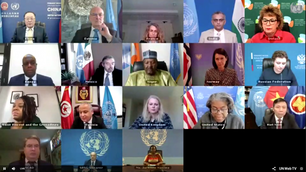 越南与联合国安理会:越南呼吁促进南苏丹过渡进程 hinh anh 2