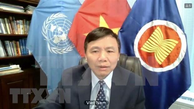 越南与联合国安理会: 越南呼吁缅甸结束暴力并努力寻求适当的解决方案 hinh anh 1