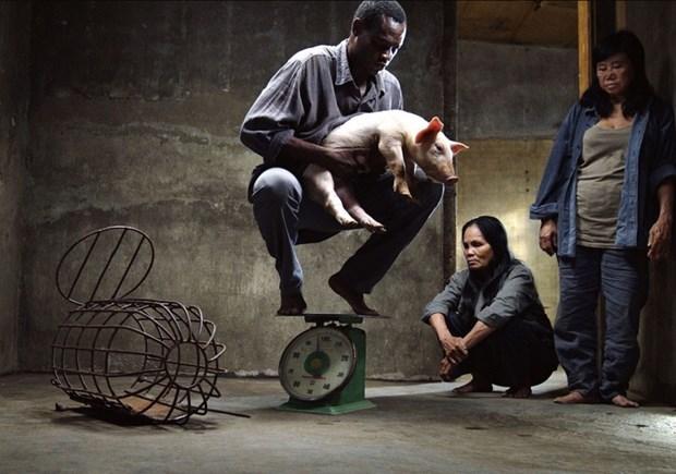 越南导演的电影作品在第71届柏林国际电影节获奖 hinh anh 1
