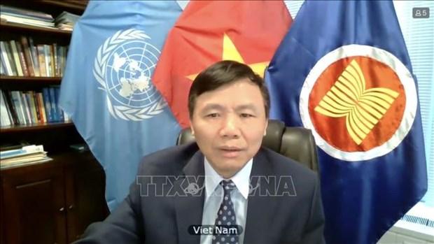 越南与联合国安理会:越南一向重视妇女的作用 hinh anh 1