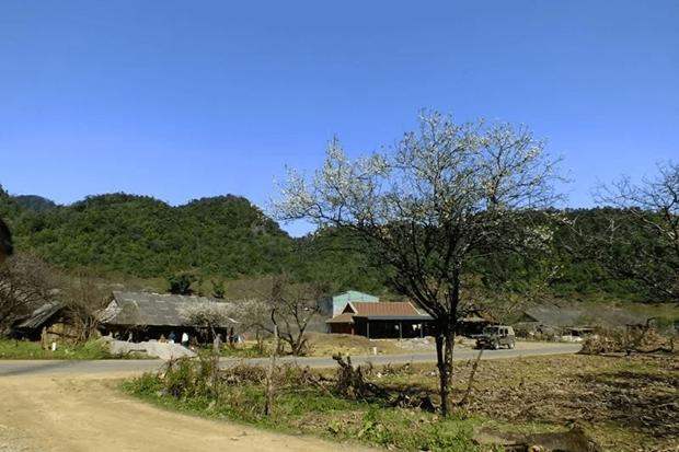 山罗省云湖县将旅游潜力化为发展力量 hinh anh 2