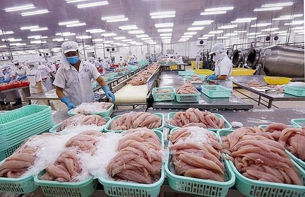 阿拉伯联合酋长国继续成为越南企业的潜在市场 hinh anh 1