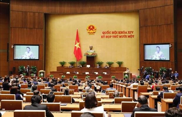 第十四届国会第十一次会议:为国家的快速和可持续发展作出贡献 hinh anh 2