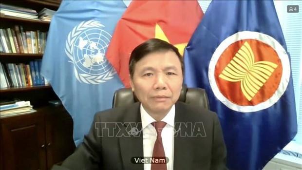 越南与联合国安理会:越南支持阿富汗和平进程 hinh anh 1