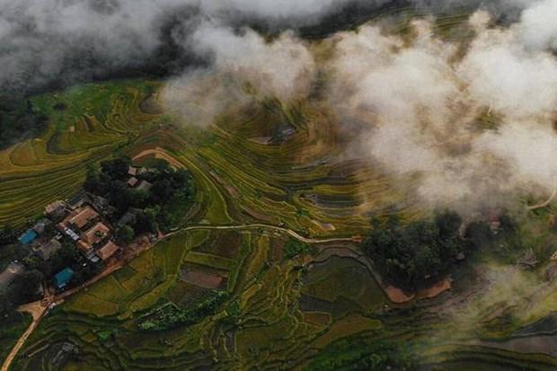 清化省将社区旅游与传统文化保护相结合 hinh anh 1