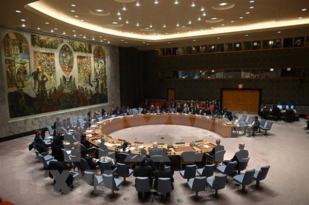 越南与联合国安理会:越南努力在联合国安理会主席的岗位上打下烙印 hinh anh 1