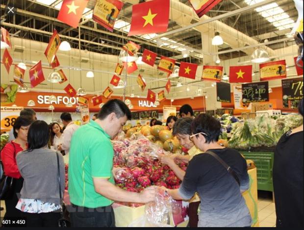 越南商品进入新加坡市场的机遇 hinh anh 1