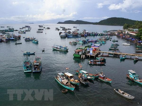 越南推进海洋资源高效利用 实现海洋经济可持续发展 hinh anh 1