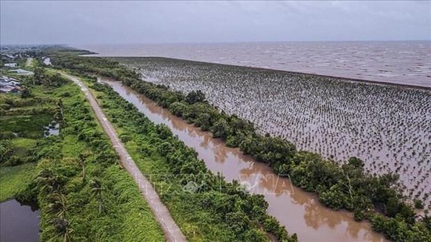 越南着力推动九龙江三角洲可持续发展和适应气候变化 hinh anh 1