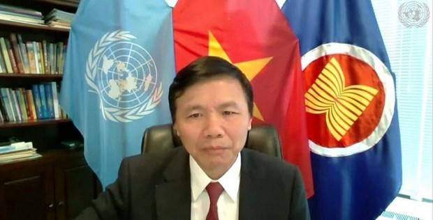 越南与联合国安理会:越南主持召开有关索马里的选举和安全进程的视频会议 hinh anh 1