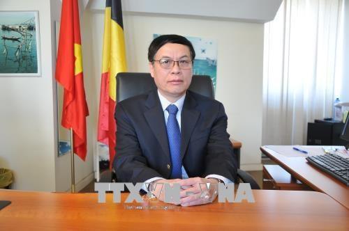 欧洲团队项目承诺为东盟国家援助8亿欧元 hinh anh 1