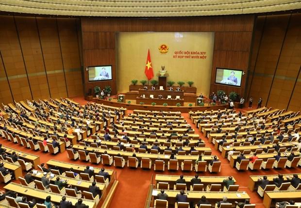 新任外交部长裴青山提出越南外交的四大优先事项 hinh anh 1