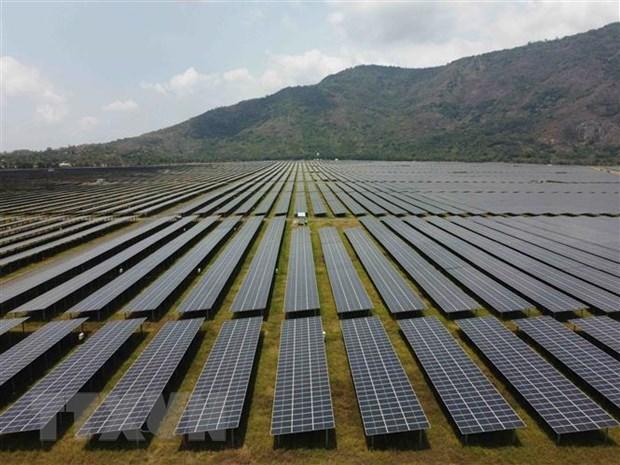 """越南太阳能正处于""""爆发阶段"""" hinh anh 1"""