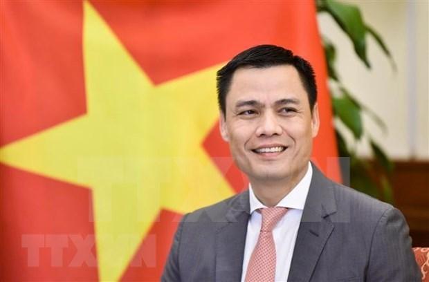 越南与联合国安理会:促进联合国安理会对话、团结与共识 hinh anh 1