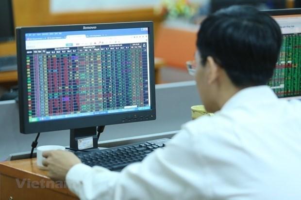 内在力量:越南股市成功的决定性因素 hinh anh 1