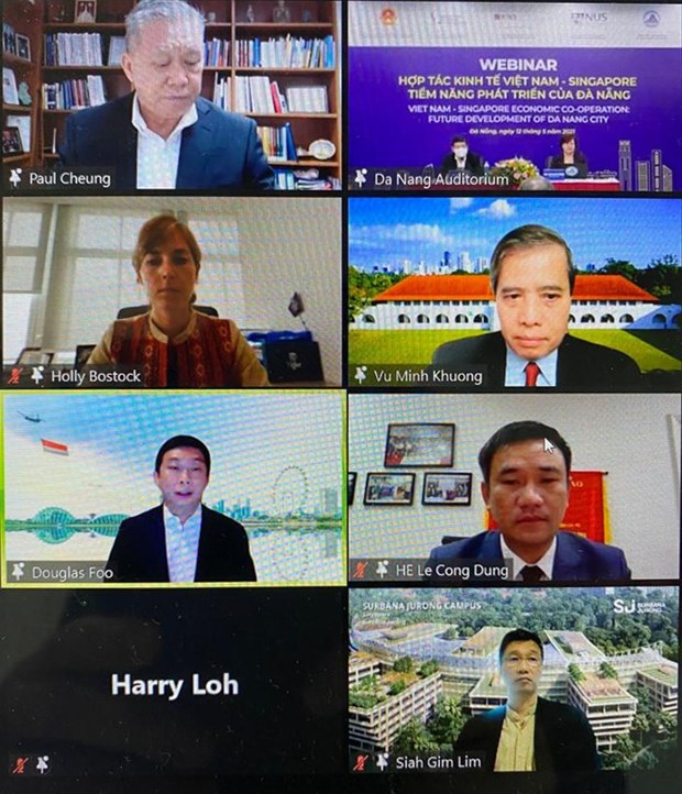 加强岘港市与新加坡之间的投资经营合作 hinh anh 1