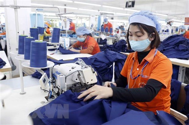 促进越南与俄罗斯贸易投资合作 hinh anh 1