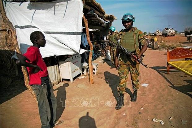 越南与联合国安理会:越南呼吁促进苏丹政治过渡进程 hinh anh 1