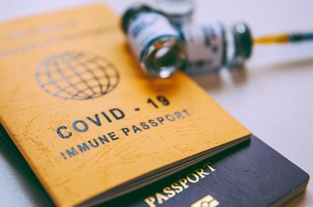 疫苗护照:寻找安全有效措施 hinh anh 1