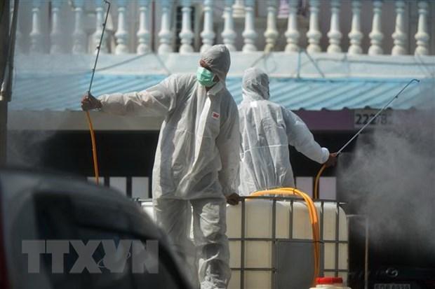 新冠肺炎疫情:泰国发现一工地500人感染新冠 马来西亚和菲律宾单日新增确诊病例均为数千 hinh anh 1