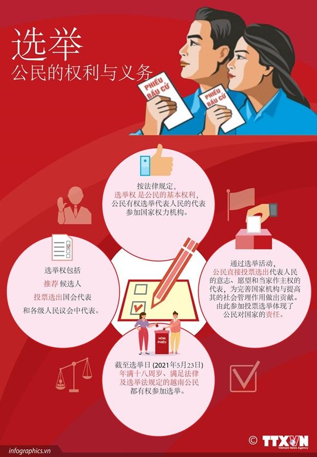 越南换届选举取得成功:全民大团结是力量之源 hinh anh 7