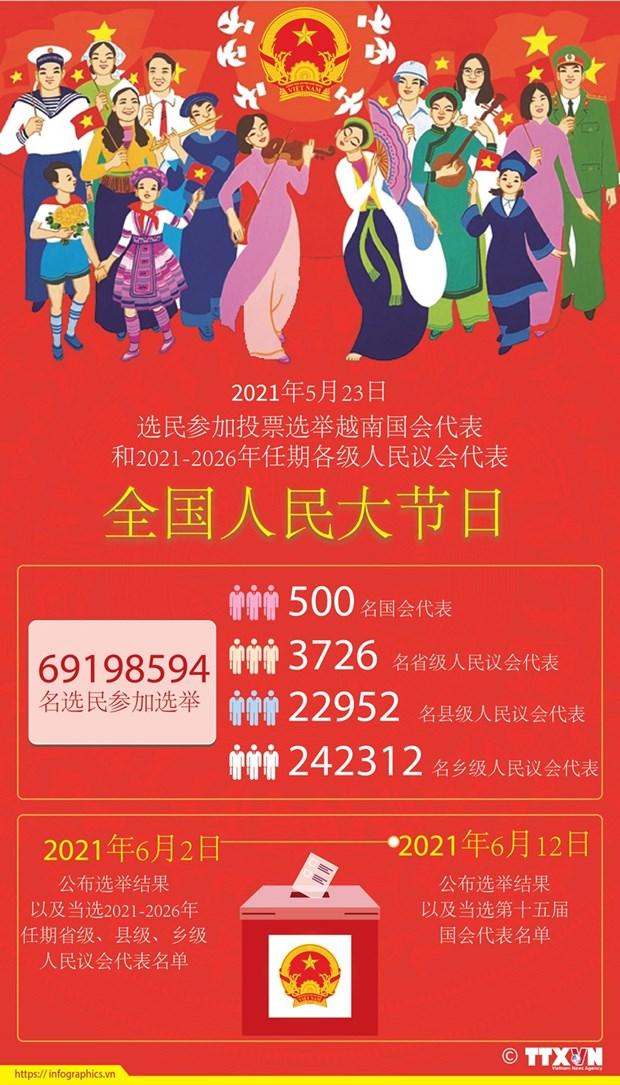 越南换届选举取得成功:全民大团结是力量之源 hinh anh 9