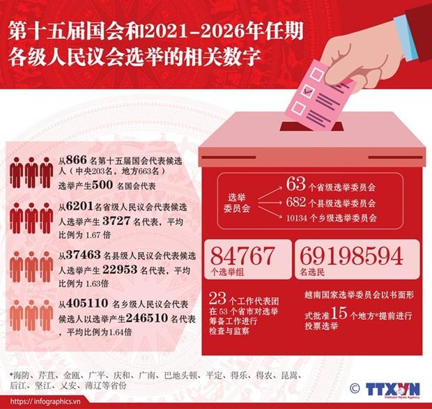越南换届选举取得成功:全民大团结是力量之源 hinh anh 8