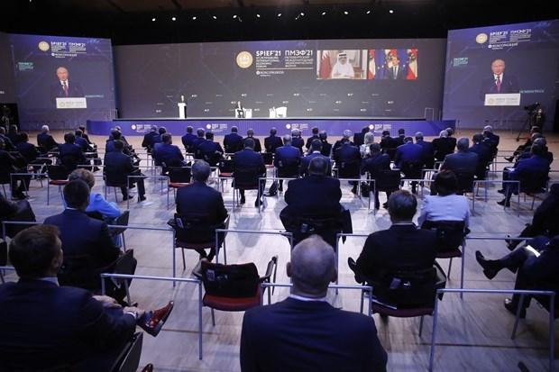 圣彼得堡国际经济论坛:越南出席关于教育与技术出口的圆桌研讨会 hinh anh 1