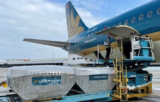 越南为运输新冠疫苗的航班创造便利条件 hinh anh 1