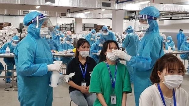 6月10日早上越南新增66例本土确诊病例 累计检测样本183万个 hinh anh 1