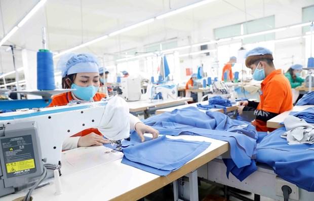 河内市制定到2030年劳动力市场发展战略 hinh anh 1