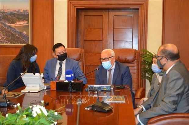 埃及多地愿与越南推进优势领域合作 hinh anh 2