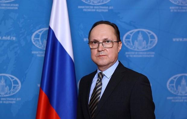 俄罗斯与越南的合作前景广阔 hinh anh 2