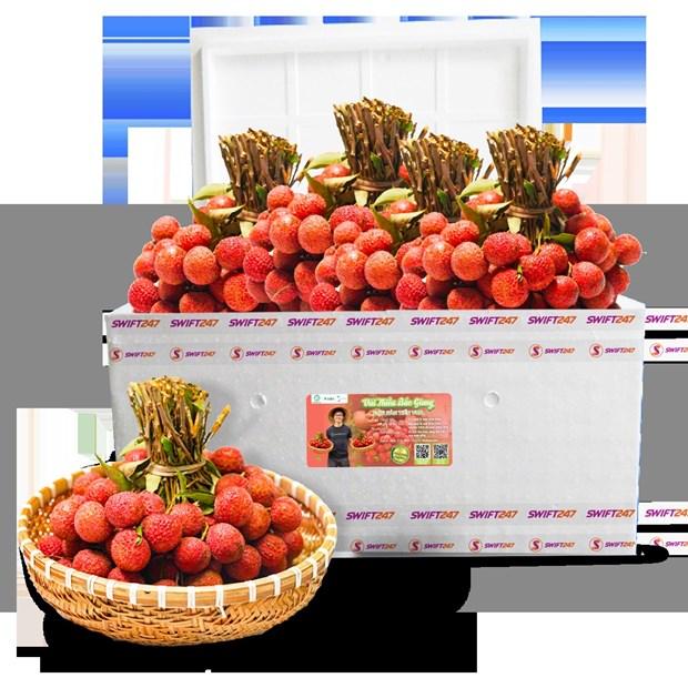 越捷携手加大荔枝在国内外市场的出口与销售力度 hinh anh 1