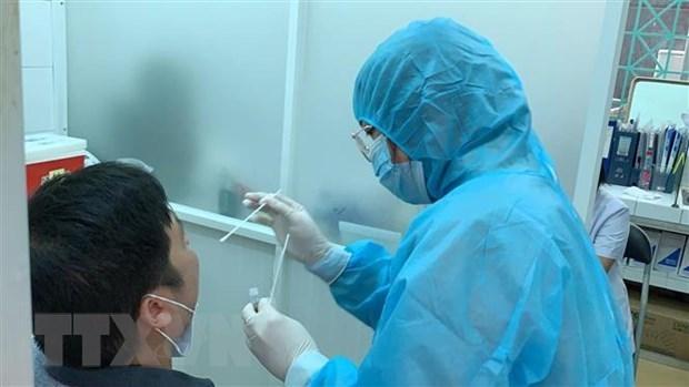 卫生部接受由德国捐赠的19万套快速检测试剂盒 hinh anh 1