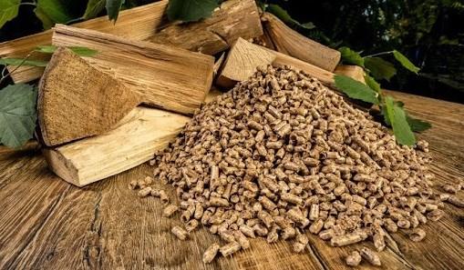 越南成为全球第二大木质颗粒出口国 hinh anh 1