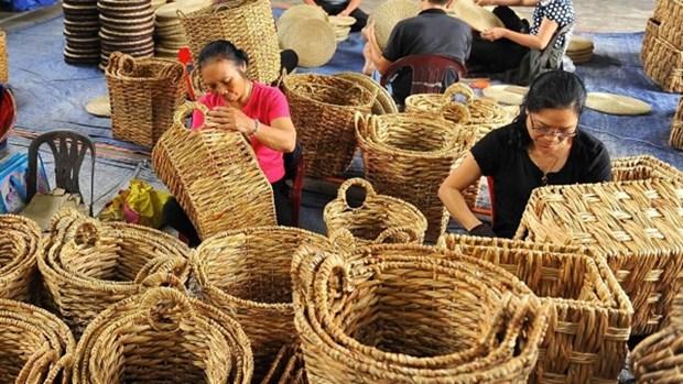 今年前五个月越南藤竹、蒲草、毯子出口额达3.5647亿美元 hinh anh 1